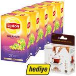 Lipton Bitki Çayı Ihlamur 5 Paket (Balparmak Bal Hediyeli)