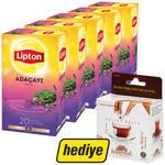 Lipton Bitki Çayı Adaçayı 5 Paket (Balparmak Bal Hediyeli)