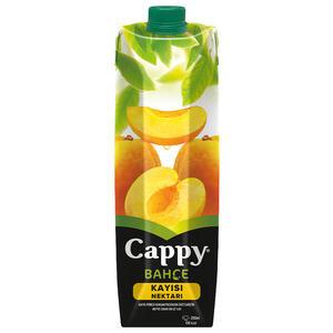 Cappy Meyve Suyu Kayısı 1 lt