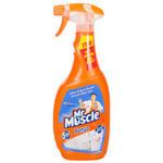 Mr. Muscle 5 In 1 Banyo Temizleyici 750 ml