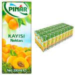 Pınar Meyve Suyu Kayısı 200 ml 27'li Paket