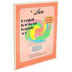 Copy Liva A4 Fotokopi Kağıdı 80 gr 10 Renk 1 Paket (100 Sayfa)