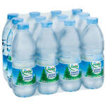 Pınar Su 0.5 lt 12'li Paket